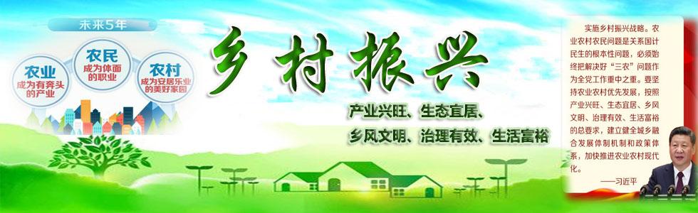 乡村振兴-中国产业规划网