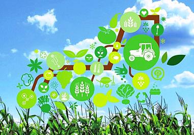 农业转型升级的有力
