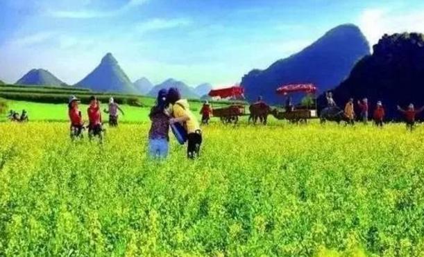 国家旅游局拿出3000亿补贴田园综合体!建设美丽乡村、休闲农业成为国家重点项目!