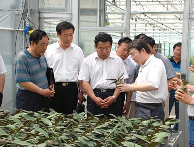 南京市都市农业十二五规划