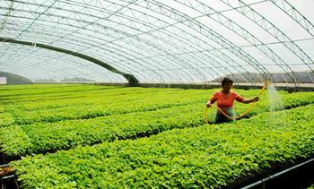 创建食品加工新型工业化产业示范基地产业发展规划