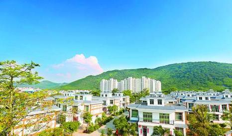 乡村发展案例三:海南芭蕉村